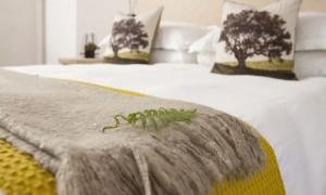 lavenir-room2-004